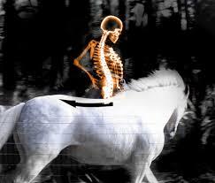 Rider Spine Image
