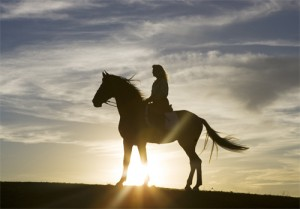 TCH_Horse_Rider_Sunset_