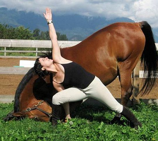 Horse and Rider doing Yoga