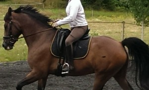 Karen Before Canter_cropped